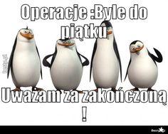 BESTY.pl - Operacje :Byle do piątku