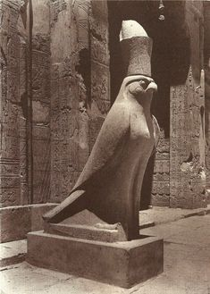 Statue of Horus at Edfu, where was the site of the Ptolemaic Temple of Horus and an ancient settlement, Tell Edfu is located on the west bank of the Nile River between Esna and Aswan.