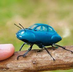 Travel bug? #dazehub
