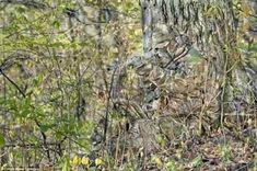 Piece together the Snowy Archer RealTree 500 Piece Puzzle to recreate a stunning photograph of a hidden hunter with bow in leafy camouflage. This x includes 500 precision cut pieces and a full image insert as a guide. Real Tree Camouflage, Camouflage Suit, Military Camouflage, Sniper Camouflage, Hunting Gear, Bow Hunting, Hunting Suit, Cellulite, Ghillie Suit