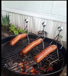 Wft pic of the day Funny As Hell, Wtf Funny, Hilarious, Navy Quotes, Funny Images, Funny Pictures, Sausage Party, Metal Garden Art, Metal Art