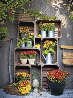 Patio Umbrellas and also Beach Umbrellas. Old Wooden Crates, Wooden Boxes, Outside Patio, Little Gardens, Container Flowers, Autumn Garden, Balcony Garden, Container Gardening, Indoor Plants