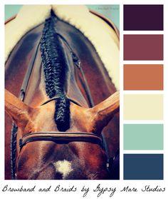 English Equestrian color palette www.thewarmbloodhorse.com
