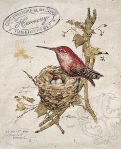 Chad Barrett Posters, Prints, Paintings & Wall Art for Sale Vintage Birds, Vintage Postcards, Vintage Images, Vintage Prints, Bird Artwork, Paper Artwork, Bird Paintings, Canvas Paintings, Chad Barrett