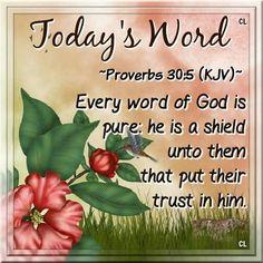 Proverbs 30:5 KJV
