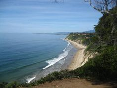 """Douglas Family Preserve, Santa Barbara - Dog friendly hike!  You can stop off at the Arroyo Burro """"Dog Beach"""" before or after your hike."""
