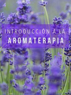 Todo lo que tienes que saber para entender la aromaterapia | Yogui Principiante