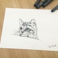 ∥ Cat pen illust ∥ 고양이 펜 일러스트 ∥ pussy ∥ kitty  #illust #tattoo #design #wonseok #cat #pussy #tattoos #kitty #pen #cattattoo #pussytattoo #kittytattoo #minitattoo #고양이 #라인타투 #고양이도안 #도안 #미니타투 #대학로 #타투이스트원석 #penillust #일러스트 #rinetattoo #고양이타투 #혜화역 #홍대타투 #예쁜타투 #성신여대 #수채화타투
