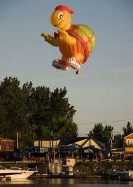 Air Balloon Rides, Hot Air Balloon, Balloon Shapes, Turtle, Exotic, Disney Characters, Fictional Characters, Balloons, Turtles