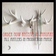 Hey, I found this really awesome Etsy listing at https://www.etsy.com/listing/191519841/any-color-or-white-faux-antlers-wall