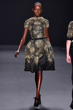 Naeem Khan Fall 2013 Ready-to-Wear Collection Slideshow on Style.com