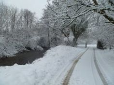 River Exe near Court Farm (David Binks)