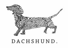 dachshund drawing - Google Search                                                                                                                                                                                 More