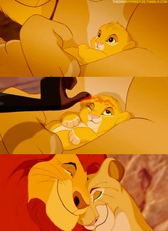 SIMBA !!! Lol stephanie if you ever see this it will bring back memories that we charish ! Luv you hobo ! Simba's foreva ;)