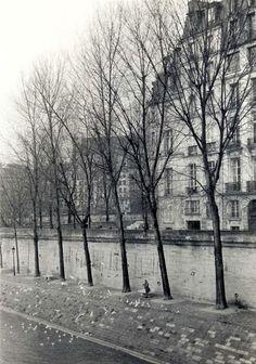 """No ano passado, Isabel Becker expôs o seu mais recente trabalho, ainda inédito, chamado """"Private Nest"""" (Ninho Privado), no Grand Palais, em Paris, no evento """"Open Art Code Paris 2012"""". São fotos de fragmentos de cenas do dia a dia."""
