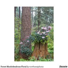 Forest Rhododendrons Floral Acrylic Wall Art