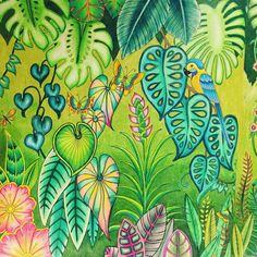 Take a peek at this great artwork on Johanna Basford's Colouring Gallery! Secret Garden Coloring Book, Coloring Book Art, Leaf Coloring, Colouring Pages, Adult Coloring, Coloring Tips, Magical Jungle Johanna Basford, Colored Pencil Tutorial, Johanna Basford Coloring Book