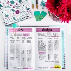 Today, I'm sharing an in-depth, step-by-step guide on how I use the all-new 2017 Live Rich Planner. I show you how to track your expenses, use the budget sheet, and how to keep track of your savings, and how you can keep track of your debt payoff.