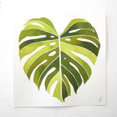 Monstera. Jenny Kiker of Living Pattern.