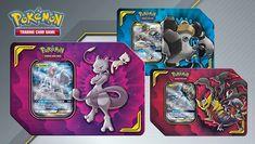 2 Booster Packs /& 3 foil promo cartes neuf 2017 RAIKOU Pokemon Trading Card Game