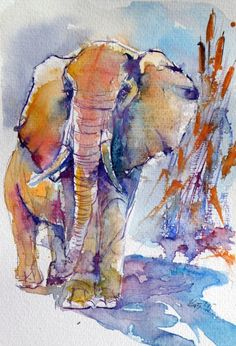 ARTFINDER: Elephant by Kovács Anna Brigitta - Original watercolour painting on high quality watercolour paper. I love landscapes, still life, nature and wildlife, lights and shadows, colorful sight. Thes... Colorful Elephant, Elephant Art, Watercolor Animals, Watercolour Painting, Watercolours, African Animals, Safari Animals, Art Sketchbook, Pet Birds