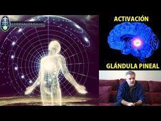 ACTIVA TU GLÁNDULA PINEAL CON SONIDOS: Los Efectos son Asombrosos - YouTube