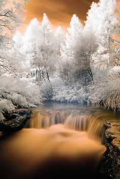 Kero Creek IR 2 unaltered by Paul Mercer photography nature Infrared Photography, Landscape Photography, Photography Composition, Winter Nature Photography, Photography Flowers, Photography Ideas, Photography Backdrops, Photography Business, Photography Studios