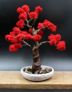 Right Bonsai Tree Pots Is Very Important Bonsai Tree Types, Bonsai Tree Care, Indoor Bonsai Tree, Bonsai Trees, Gardening Zones, Hydroponic Gardening, Organic Gardening, Ikebana, Red Maple Bonsai