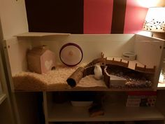hamster cage! Ikea Billy