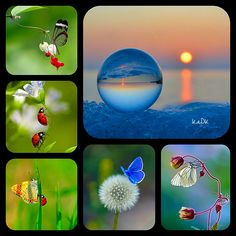 Collage made by KaDK's World - https://www.pinterest.com/k5606/kadks-world-of-collages-and-moodboards/