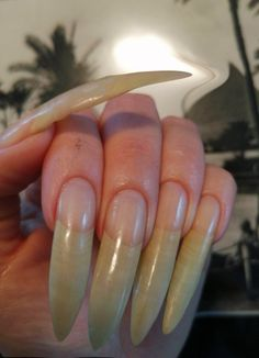 Long Natural Nails, Curved Nails, Exotic Nails, Finger, Collection, Fingers