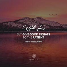 """But give good tidings to the patient"" - [Surah Al-Baqarah Quran Quotes Love, Beautiful Islamic Quotes, Quran Quotes Inspirational, Coran Quotes, Noble Quran, Coran Islam, Quran Recitation, Islamic Quotes Wallpaper, Allah Love"