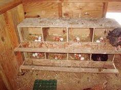 Afbeeldingsresultaat voor bouwtekening kippenhok