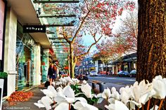 Photo: Retail therapy ~ Nuffield Street, Auckland #retail  #huffer  #newmarket