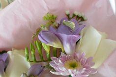 Traditional Pale Colour Wedding Wedding Flowers, Succulents, Colour, Traditional, Plants, Color, Succulent Plants, Plant, Colors