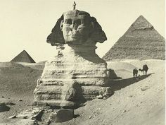 Rare Photos of Egypt from the Sphinx & Pyramids of Chefren and Mankaura, Giza – Photograph via NYPL Digital Gallery Old Egypt, Ancient Egypt, Ancient History, Art History, Old Pictures, Old Photos, Vintage Photos, Antique Pictures, Le Sphinx