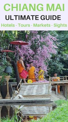 Chiang Mai Guide to things to do - Where to Stay - Places to Visit - Tours in and around Chiang Mai. Ultimate itinerary for anyone planning a visit to this fascinating Northern Thailand City. #chiangmai #chiangmaitours #thailand