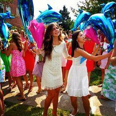 Dolphin balloons seem pretty necessary for Bid Day, right?
