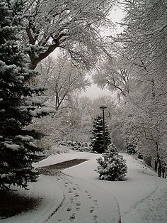 Image result for byu south walking path
