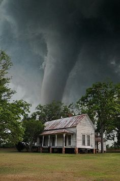 Hoaxed photo of a tornado, supposedly near Georgia. Isn't it strange that the tornado is so close and the trees are showing no sign of wind? It's Photoshopped. Tornados, Thunderstorms, Natural Phenomena, Natural Disasters, Fuerza Natural, Cool Pictures, Cool Photos, Nature Pictures, Dame Nature