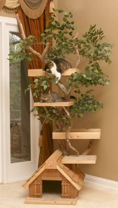 Pet Tree Houses' Lifelike Mature Large Cat Tree House is a bit different from these standard models in that an actual tree is actually part of the design and intertwines itself amongst the platforms of it. Cool Cat Trees, Cool Cats, Cat Tree Designs, Large Cat Tree, Cat Tree House, Tree Houses, Kitty House, Cat Houses, Cat Towers