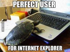 Perfect user for Internet Explorer