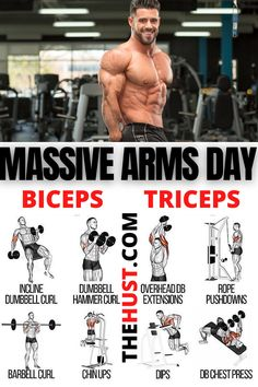 Massive arms day workout plan