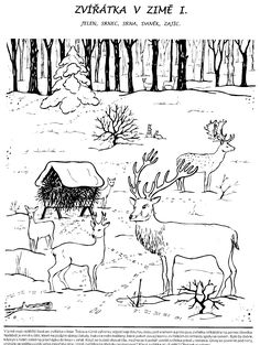 zima pracovní list - Hledat Googlem Painting Lessons, Art Lessons, Coloring Sheets, Coloring Books, Wood Burning Art, Christmas Coloring Pages, Beginner Painting, Forest Animals, Drawing For Kids