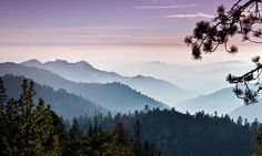 Yosemite National Park > Nature > Stanislaus National Forest // Create your best outdoor vacation!