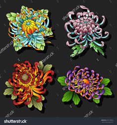 Chrysanthemum Flowers Tattoo Design Set Traditional Tattooing Art Style Collection