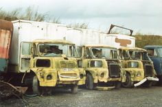 And what happened to them Vintage Trucks, Old Trucks, Abandoned Cars, Abandoned Vehicles, Classic Trucks, Classic Cars, Ww2 Fighter Planes, Automobile, Old Lorries