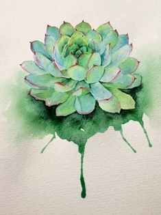 Pin by jammie dykstra on suculent plants акварельная живопис Watercolor Succulents, Watercolor Cactus, Easy Watercolor, Painting & Drawing, Watercolor Paintings, Watercolors, Watercolor Tattoos, Succulent Tattoo, Colorful Succulents