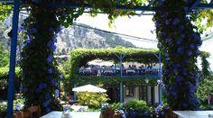 Schattige Tavernen sind uns bei der Hitze immer willkommen. Griechenland, Insel Kos.