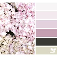 design seeds | for all who ♥ color ❤ liked on Polyvore featuring backgrounds, design seeds, colors, filler and colour
